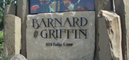 Wine Recommendation: Barnard Griffin