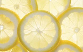 The Modern Lemonade Stand