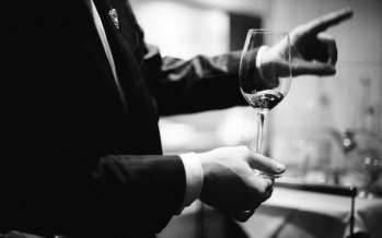 The Sommelier: Your Tour Guide to the World of Wine