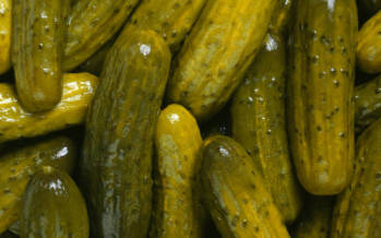 On the Menu: Pickles