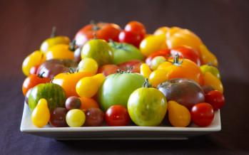 Viva La Tomato!